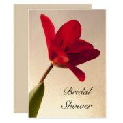 Elegant Red Tulip Bridal Shower