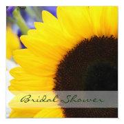 Sunflower Bridal Shower Square Invitations